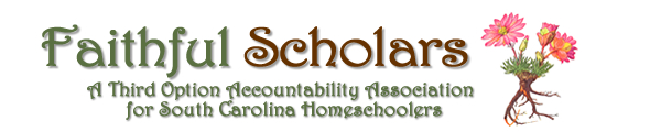 Faithful Scholars - South Carolina third option accountability group